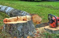 free Berkhamsted tree felling quotes